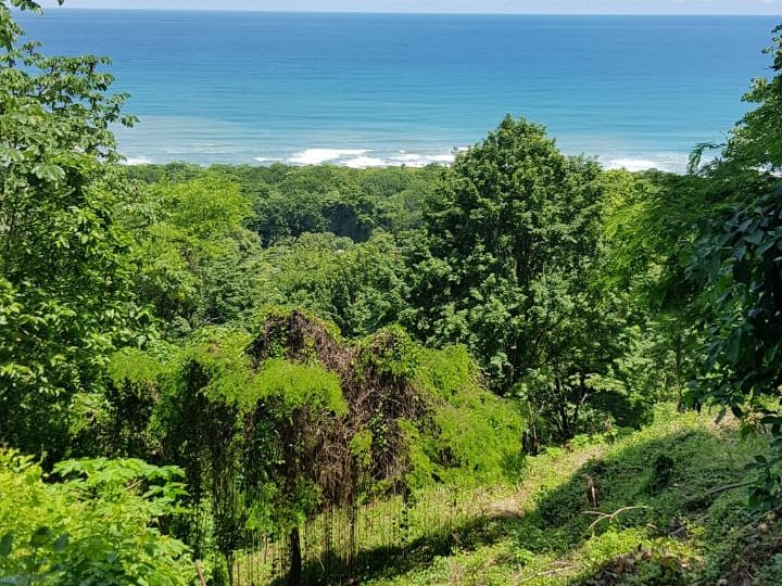 Amazing Ocean View Lot Santa Teresa, Costa Rica